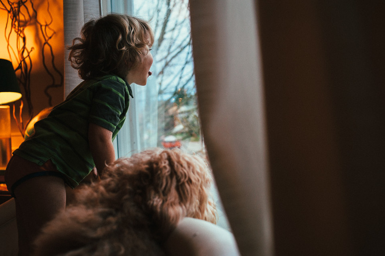 boy and dog look out window - family documentary photography