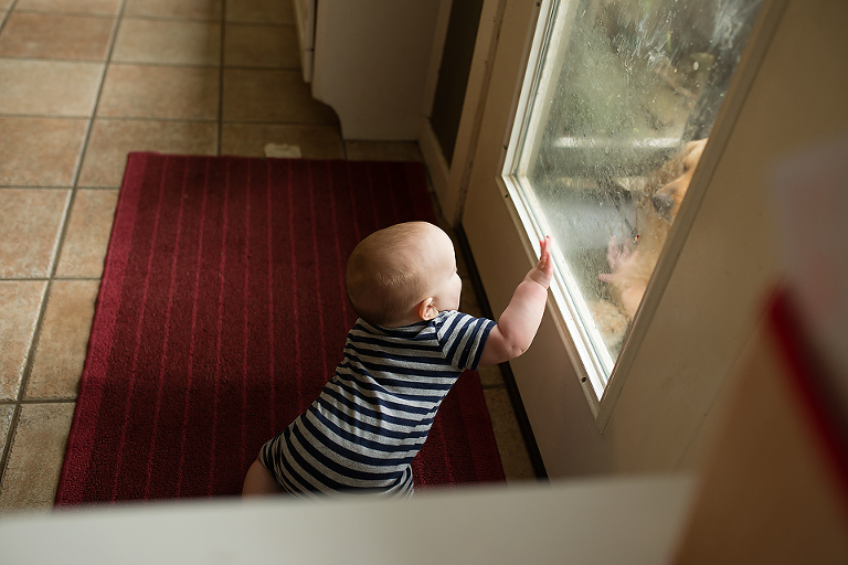 Baby at window - Family Documentary Photography
