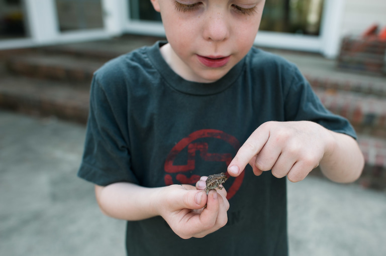 boy holding frog - Family Documentary Photography