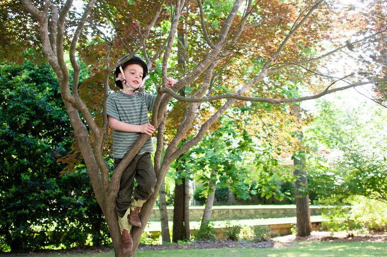 boy in tree with helmet - Family Documentary Photography