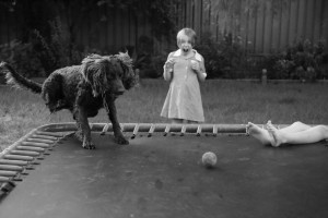 Dog chases after ball on trampoline and startles girl