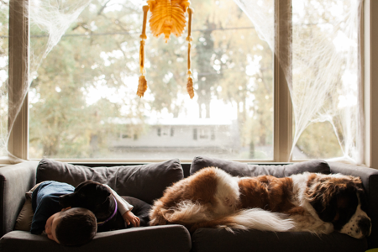 dogs and boy on couch - documentary family photography