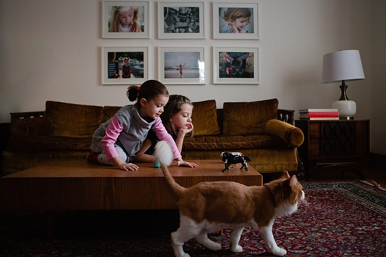 Girls with toy horses and large cat - Documentary Family Photography