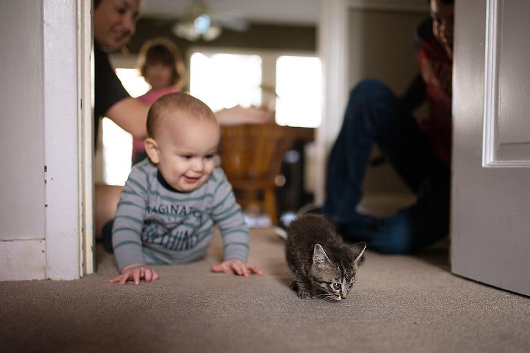 Baby follows kitten - Documentary Family Photography