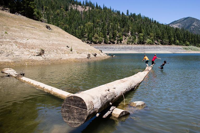 kids jumping off log into lake