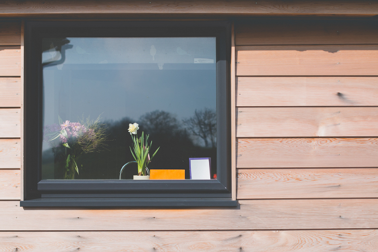 flower in window - Documentary Family Photography
