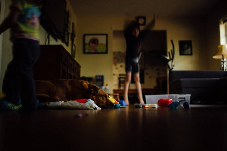 dog asleep amidst child's mess - Documentary Family photography