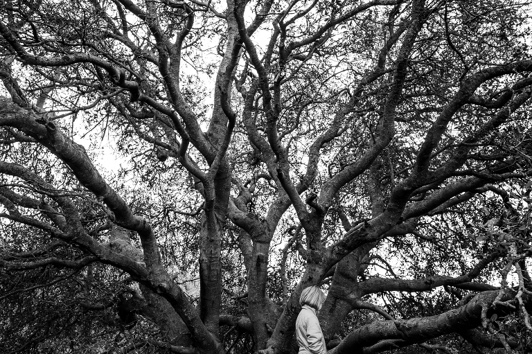girl walks in front of large tree - documentary family photography