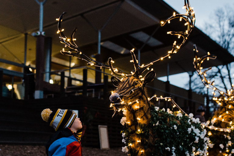 child looks at light up reindeer - Documentary Family Photography