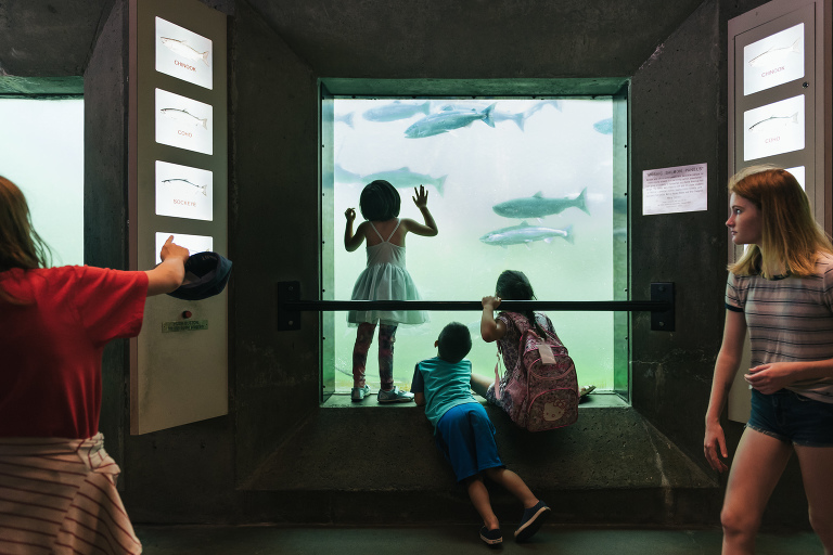 kids at aquarium - documentary family photography