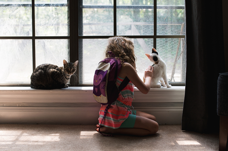girl tends to cats - Documentary Family Photography