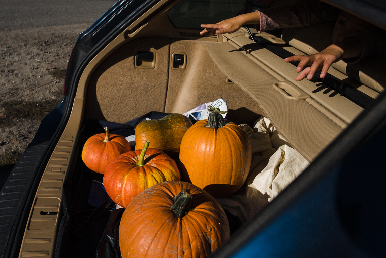 pumpkins in car trunk - documentary family photography